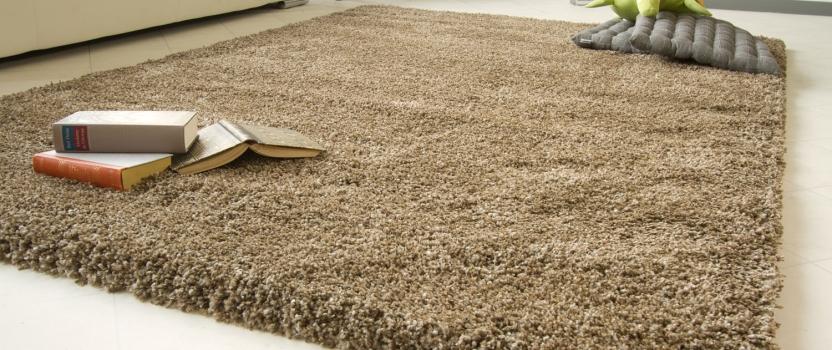 ¿Cómo proteger nuestras alfombras?
